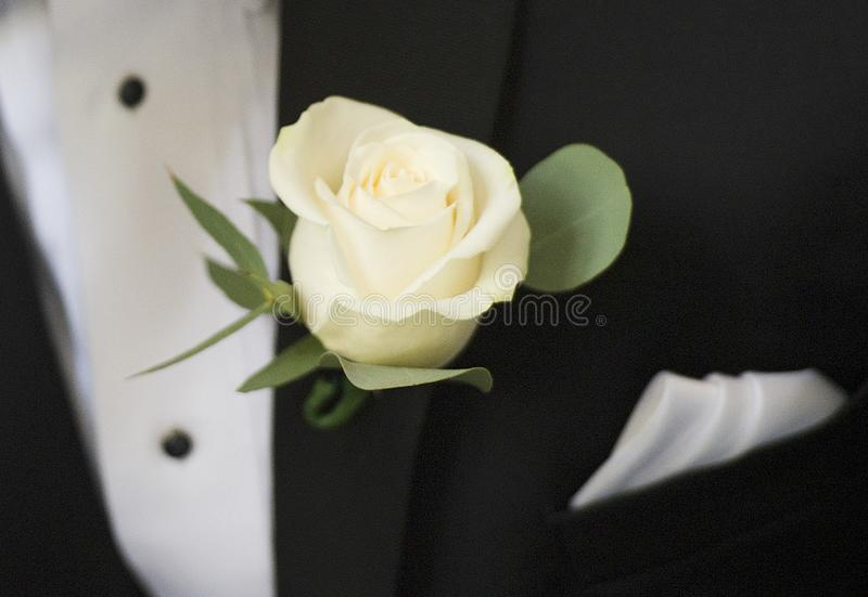 Kwiat na fornala lapel obraz royalty free