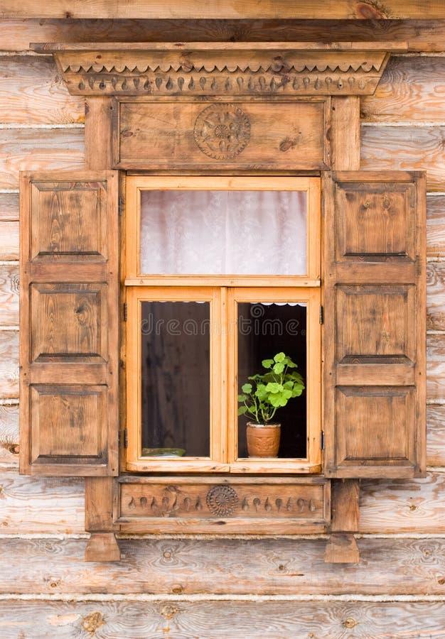 kwiat okno zdjęcie stock