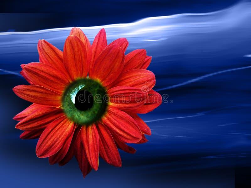kwiat oko ilustracja wektor