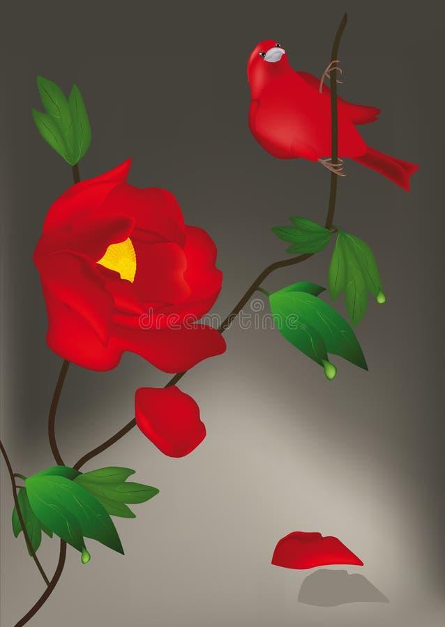 kwiat ptasia czerwień ilustracja wektor