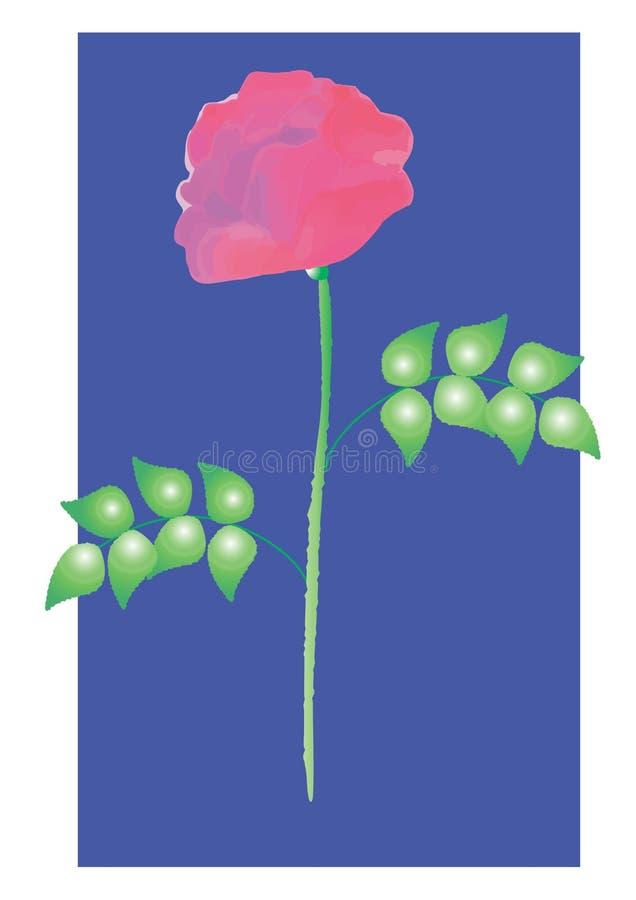 Kwiat róż jpeg wizerunek obraz stock