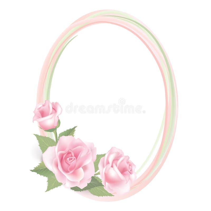 Kwiat róży rama odizolowywająca na białym tle. Kwiecisty wektorowy wystrój. royalty ilustracja