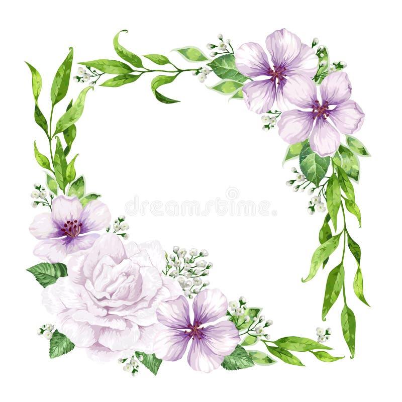 Kwiat rama w akwarela stylu odizolowywającym na białym tle zaproszenie karciany szablon Kwadratowy skład miejsce royalty ilustracja
