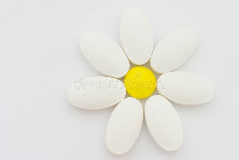 kwiat rumianku tworzy pigułki zdjęcia royalty free