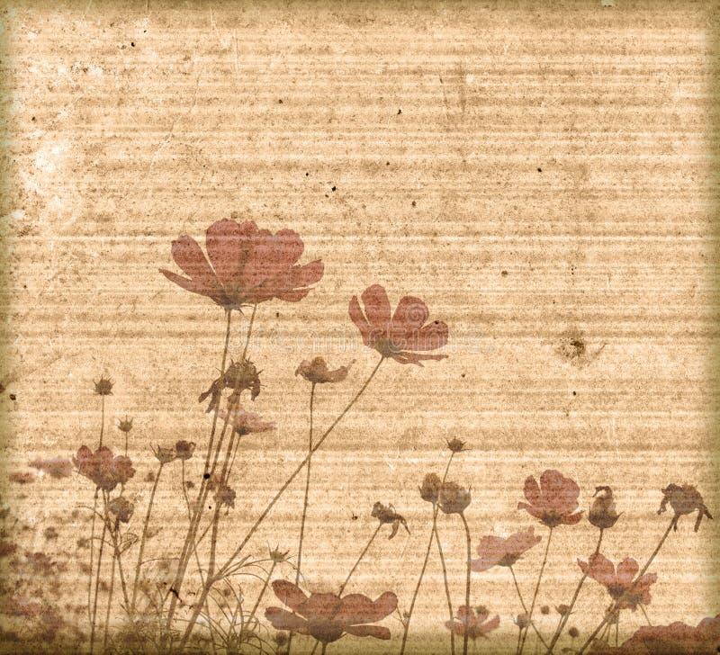kwiat tła ramy stary papier ilustracji