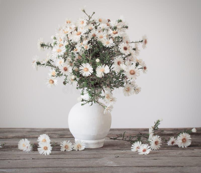 kwiat wazy white obrazy stock