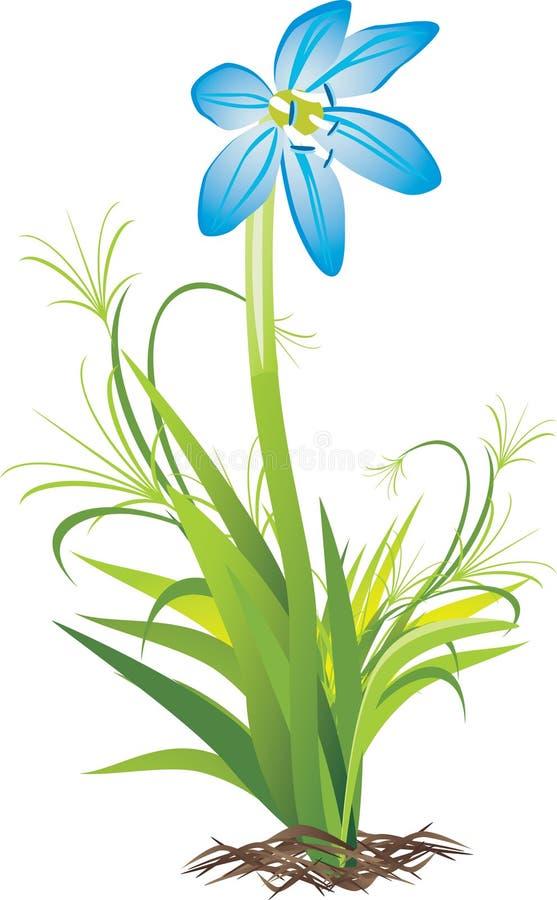 Download Kwiat wiosna ilustracja wektor. Ilustracja złożonej z ziemia - 13330338