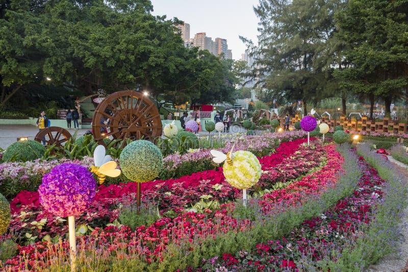 Kwiat wystawa w Taipa Mieści muzeum zdjęcie royalty free