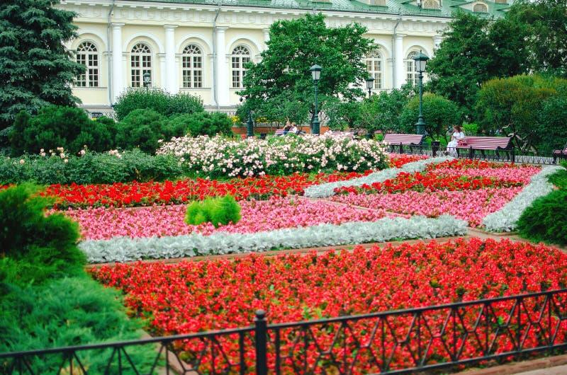 Kwiatonośni kwiatów łóżka w Aleksander ogródzie obrazy royalty free