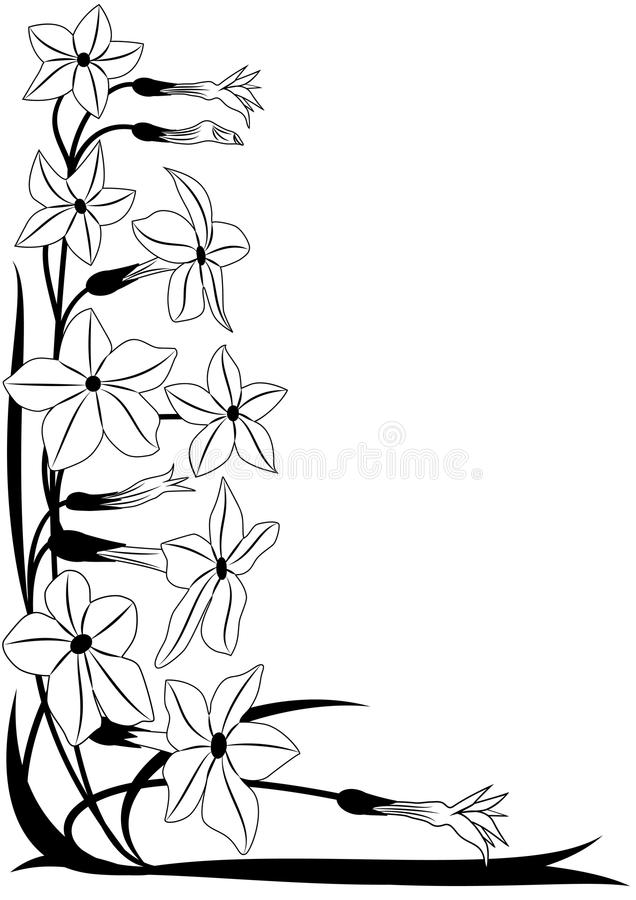 Kwiatonośny tytoń royalty ilustracja