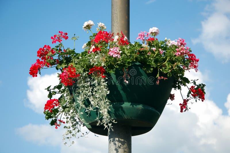 Kwiatu łóżko na lamppost fotografia stock
