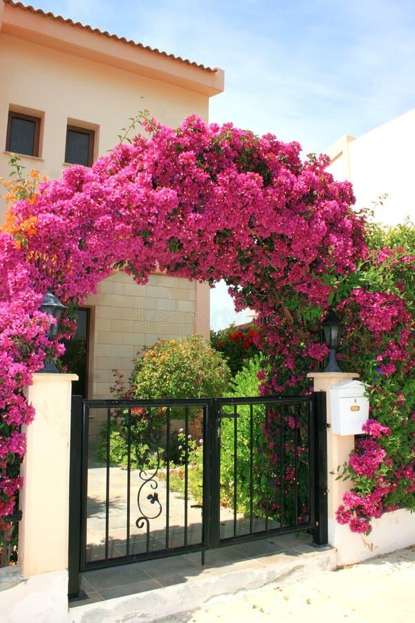 kwiatu łękowaty dom obraz royalty free