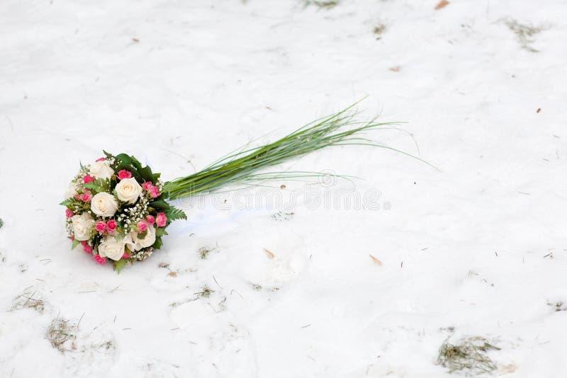 kwiatu śnieg obraz royalty free