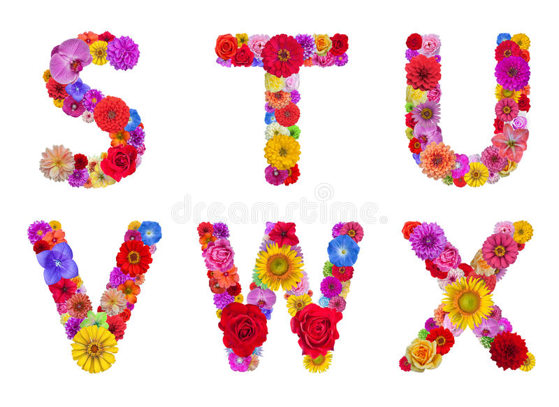 Kwiatu abecadło zdjęcie royalty free