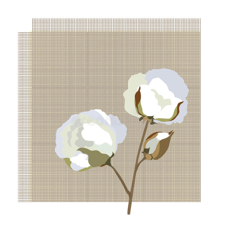Kwiatu bawełniany symbol royalty ilustracja