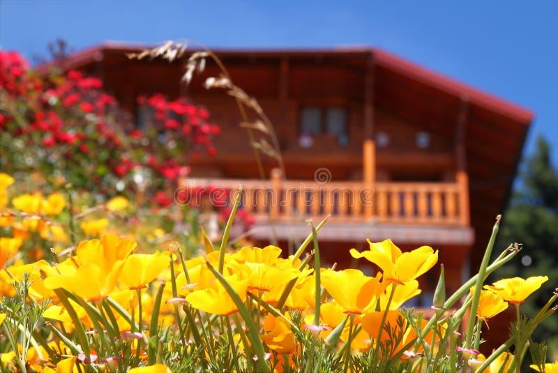 kwiatu dom obrazy royalty free