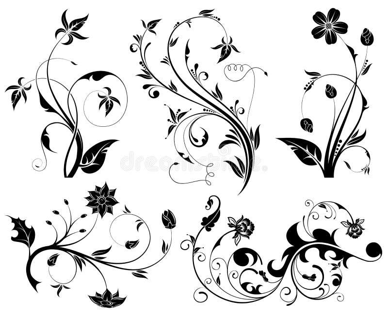 kwiatu duży set ilustracji