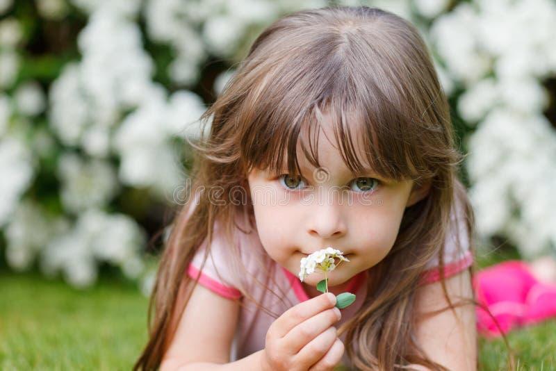 kwiatu dziewczyny trawy otudoor odory obraz royalty free