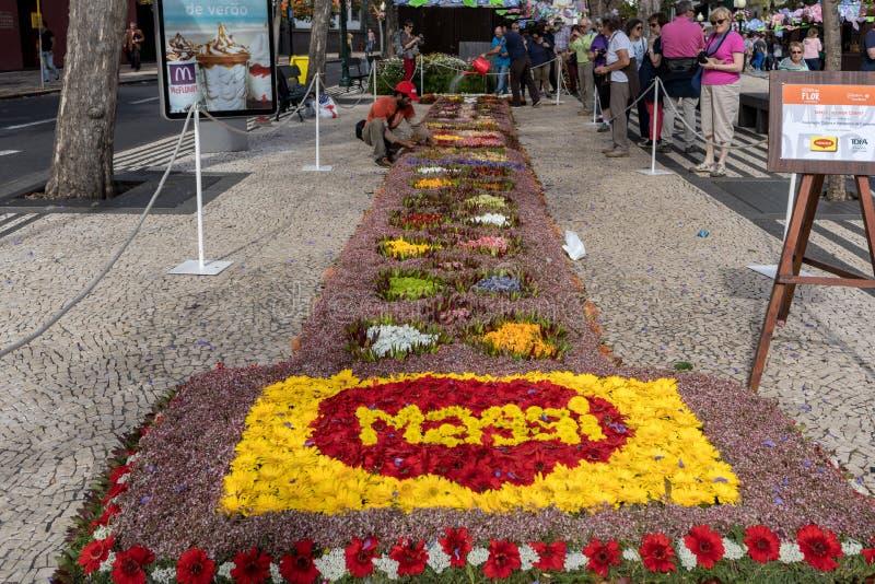 Kwiatu festiwal - sławni kwieciści dywany w centrum miasta Funchal wzdłuż środkowego deptaka Avenida Arriaga madeira fotografia royalty free