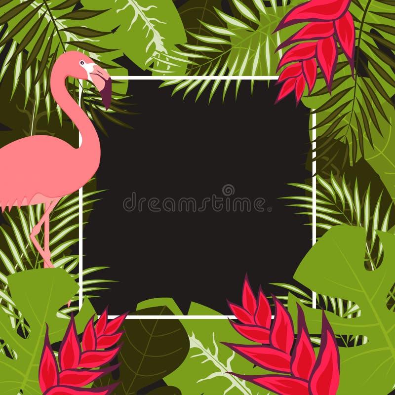 Kwiatu flaminga rama 1 ilustracja wektor