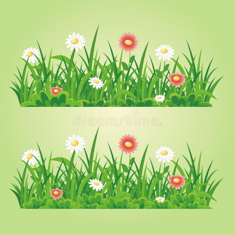 Kwiatu i trawy bezszwowy wektorowy element ilustracja wektor