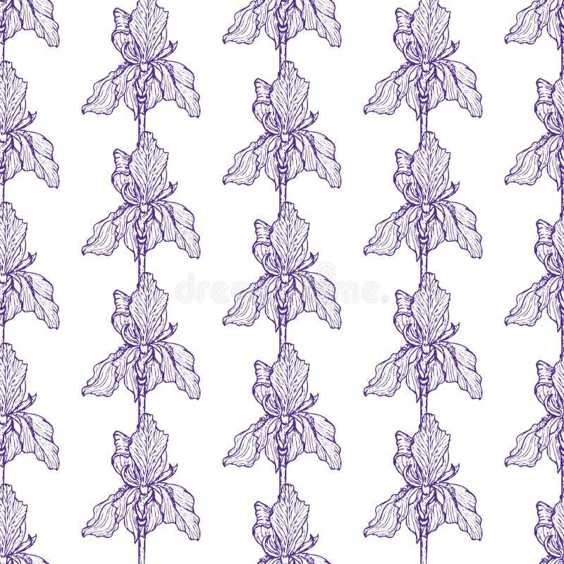 Kwiatu irysa wzoru błękit ilustracja wektor