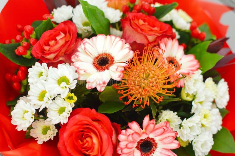 Kwiatu jaskrawy tło dla karty obraz royalty free