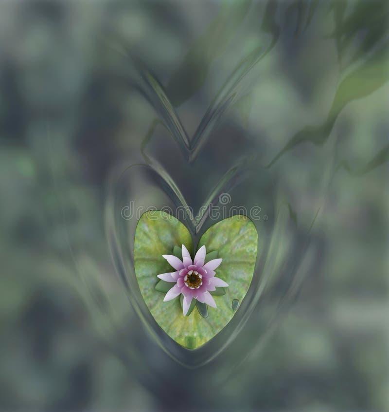 kwiatu lelui woda zdjęcie royalty free