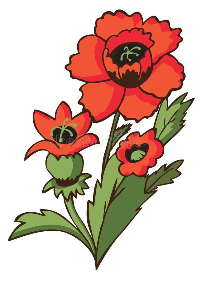 Kwiatu maczek na bielu royalty ilustracja