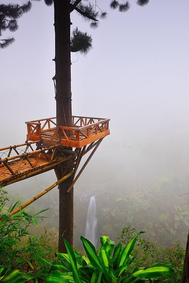 Kwiatu ogród Silancur Cudowny Magelang Indonezja zdjęcia stock