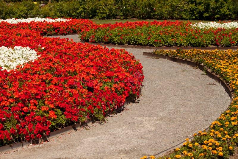 kwiatu ogródu ślad obrazy stock