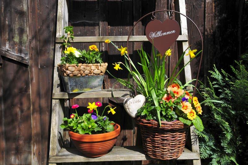 kwiatu ogrodnictwa powitanie obrazy stock