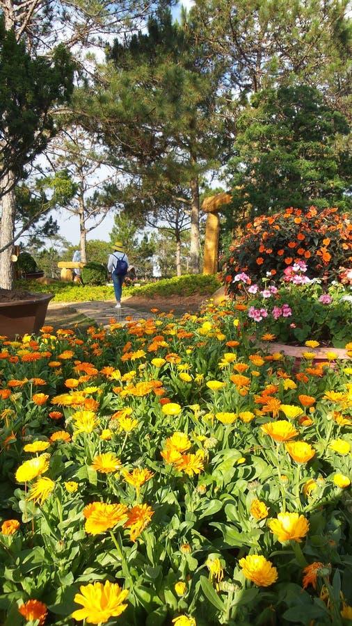 Kwiatu park obraz stock