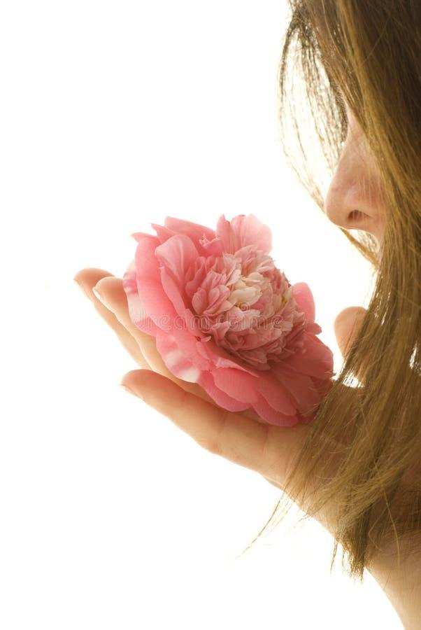 kwiatu perfumowanie zdjęcie stock