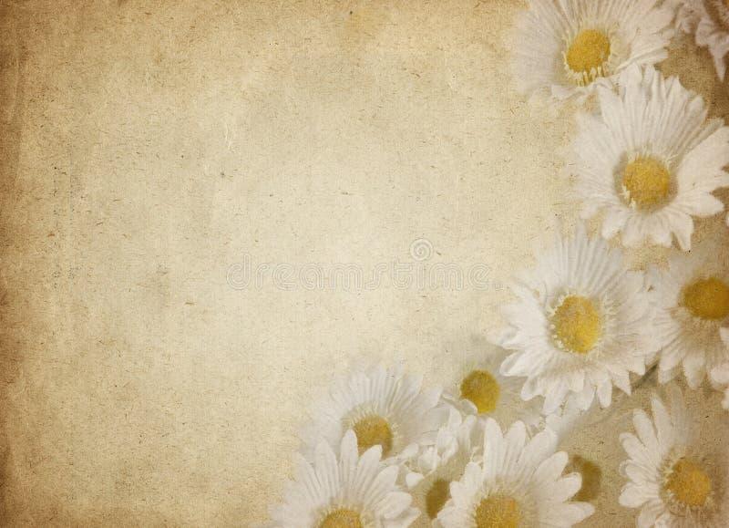 kwiatu pergamin royalty ilustracja