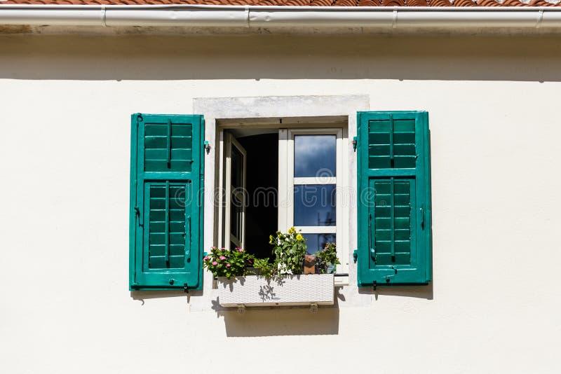 Kwiatu pudełko w okno z Zielonymi żaluzjami obrazy stock