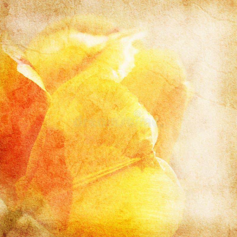 Kwiatu rocznika papieru bacground royalty ilustracja