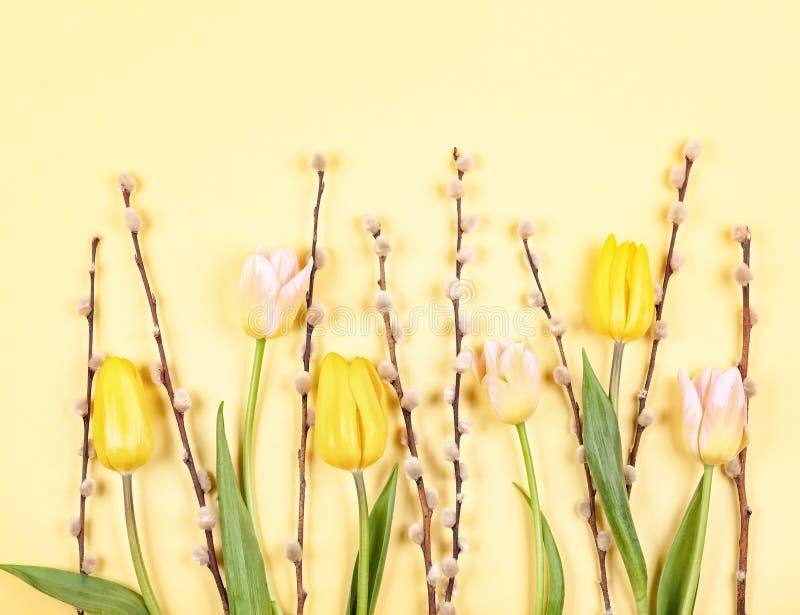 Kwiatu skład z tulipanami i gałąź kici wierzba na żółtym tle zdjęcia stock