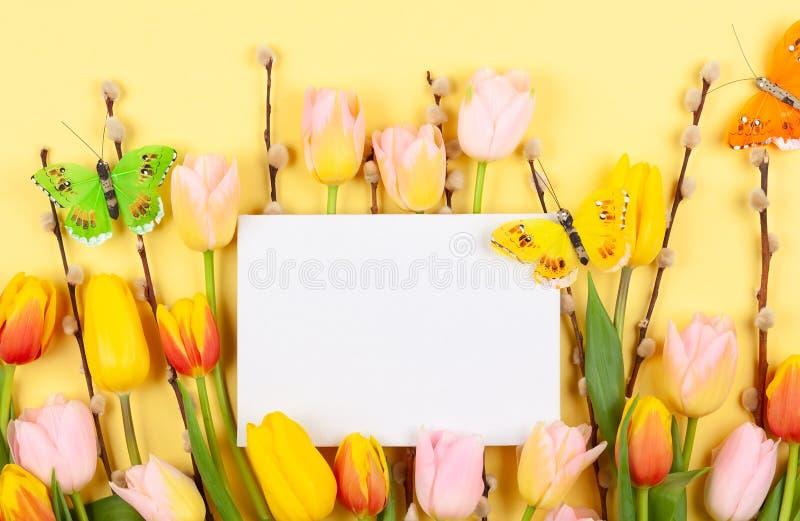 Kwiatu skład z tulipanami i gałąź kici wierzba na żółtym tle obraz royalty free