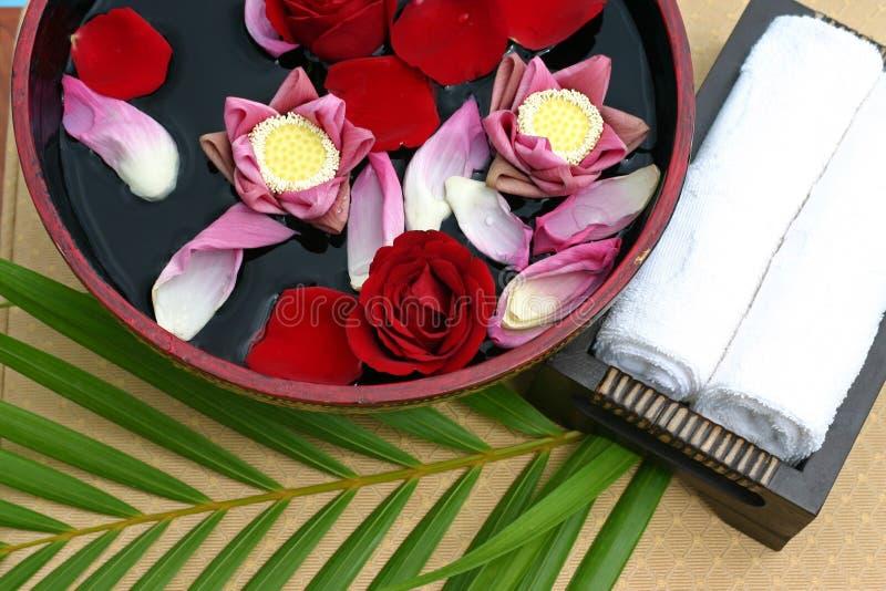 Kwiatu skąpanie fotografia stock