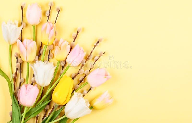 Kwiatu skład z tulipanami i gałąź kici wierzba na żółtym tle obrazy stock