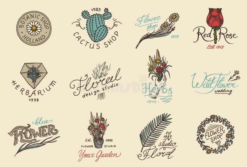Kwiatu sklepu emblematy i Jaskrawy logo Rocznika bukiet Uprawiać ogródek znaki i piękno retro etykietkę Ręki rysować odznaki kwie royalty ilustracja