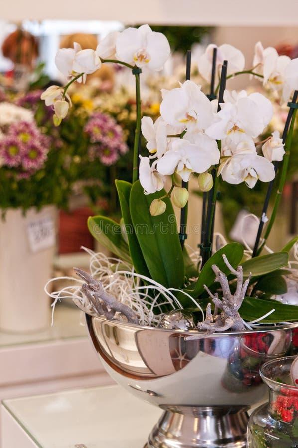 Kwiatu sklepu wnętrze zdjęcia royalty free