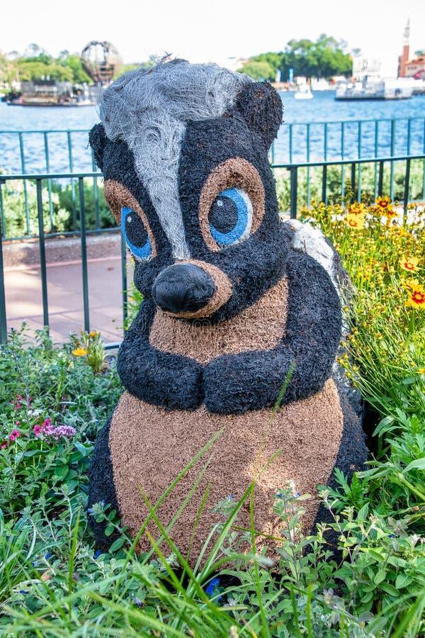 Kwiatu topiary pokazu Skunksowa postać na pokazie przy Disney World obrazy stock