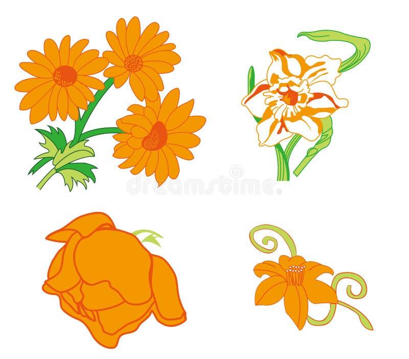 Kwiatu wektor fotografia stock
