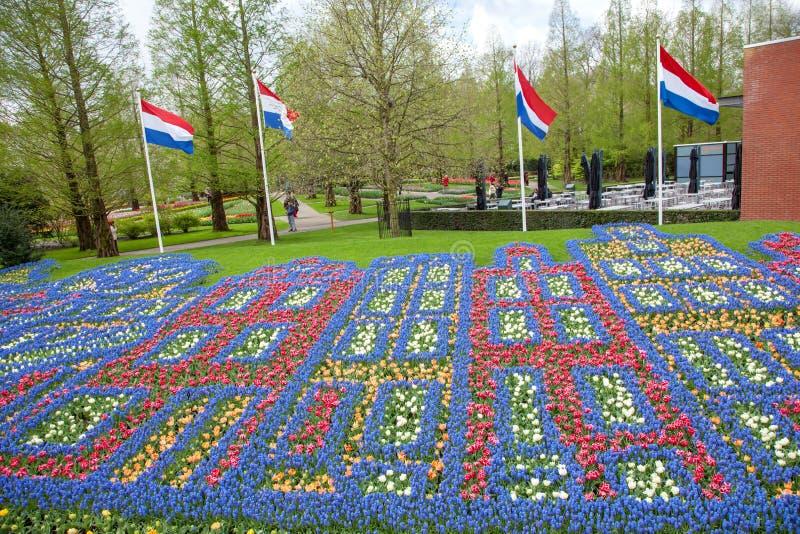 Kwiatu wzór w wiosna ogródzie Keukenhof, Lisse, holandie obrazy royalty free