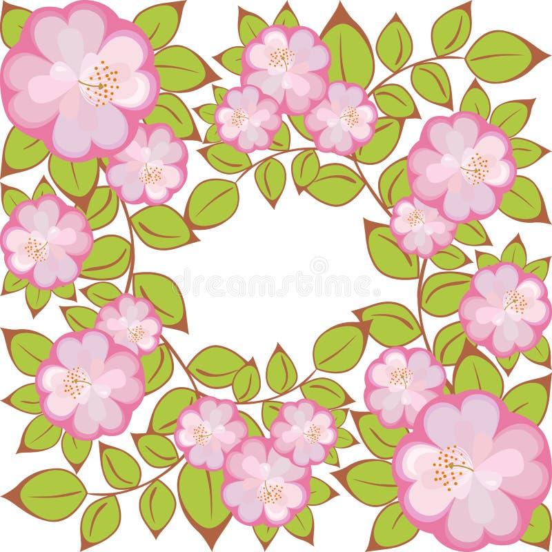 kwiatu wzoru kwadrata wektor ilustracji