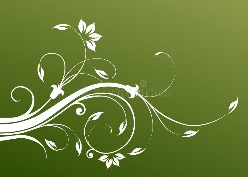 Download Kwiatu wzoru winogrady ilustracji. Ilustracja złożonej z dekoruje - 13337546