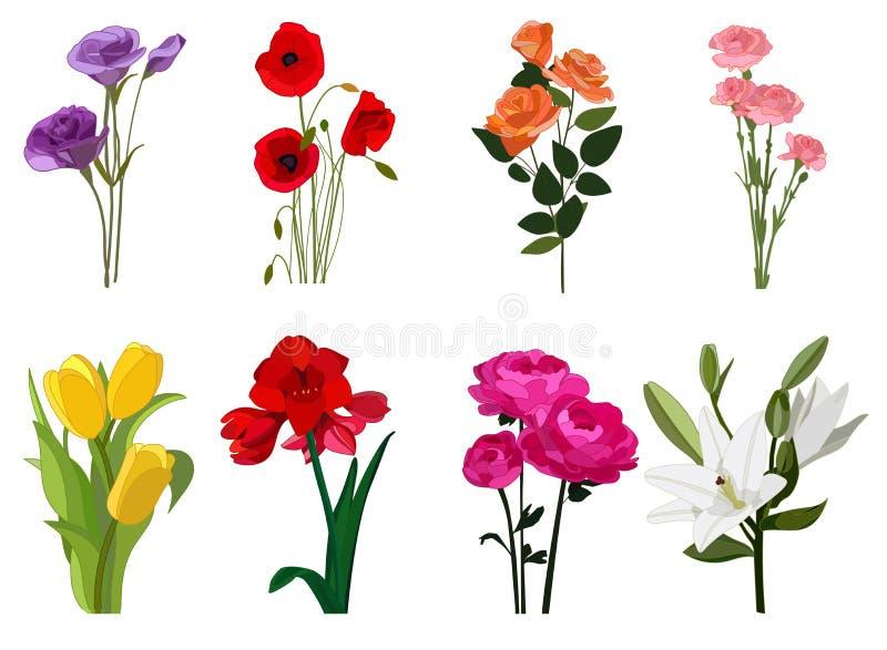 Kwiaty barwią ikona set, okwitnięcie symbole kolekcja, wektorów nakreślenia, logo ilustracje, kwiecistych znaków realistyczny mie ilustracji