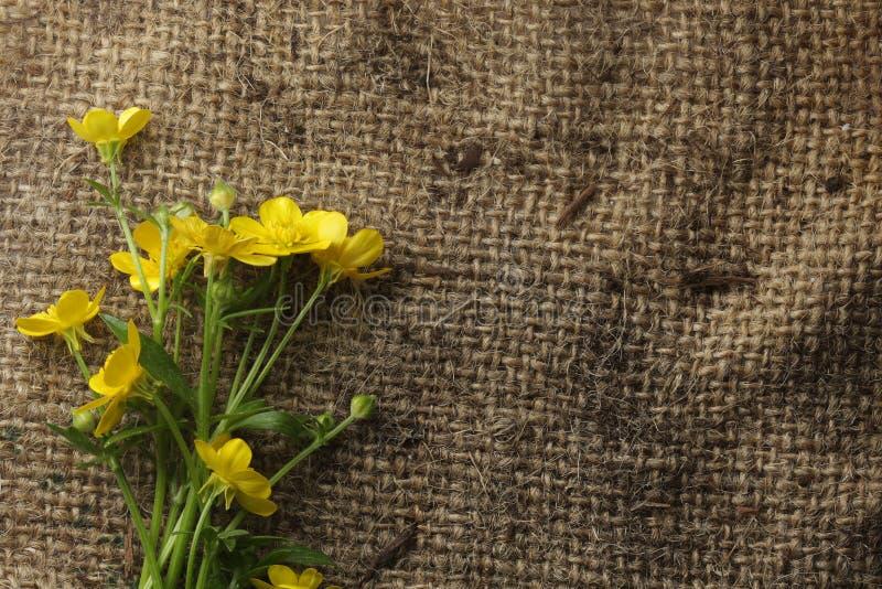 kwiaty burlap ładny żółty zdjęcie stock